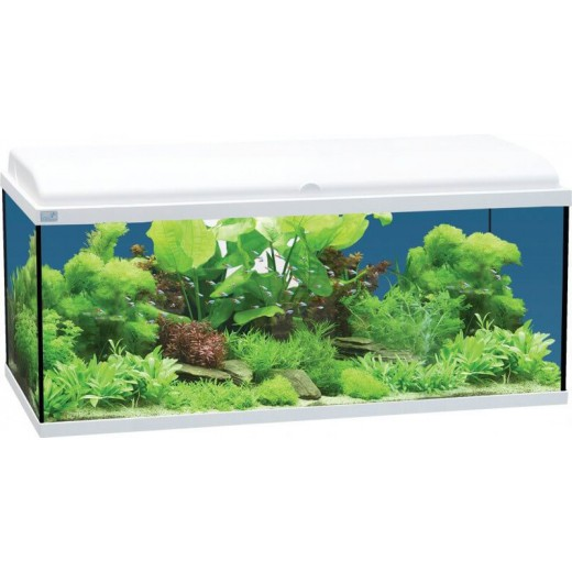 Aquarium 80x30 led blanc for Meuble 80x30