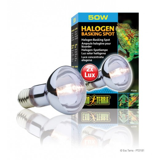 Lampe Exo Terra halogène basking spot 50w