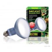 Lampe Exo Terra daylight basking spot 150w