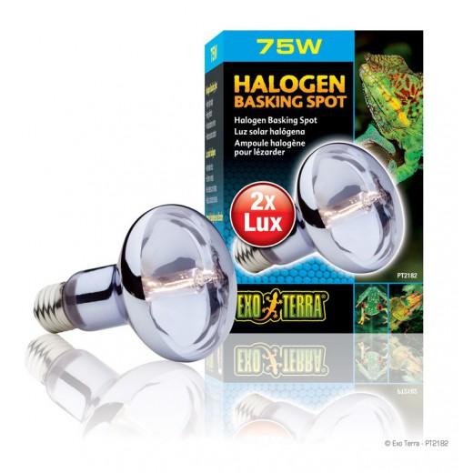 Lampe Exo Terra halogène basking spot 75w