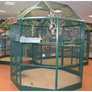 Volière Roma vert, 350x230x265cm (5 Box) - sur commande