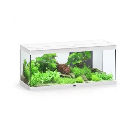 Aquarium Style LED 100 - 160 L - Blanc