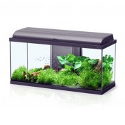 Aquarium Aquadream LED 80 - 90 L- Noir