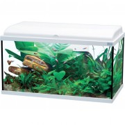 Aquarium Aquadream LED 80 - 90L - Blanc