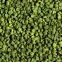 Alimentation pour cichlides herbivores - 1L
