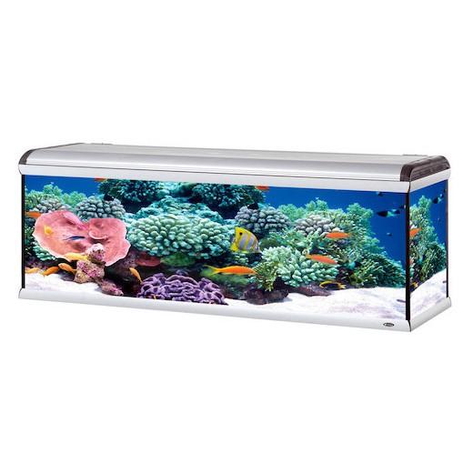 Aquarium star 200 750L, 202x62x72.5