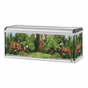 Aquarium Star 160 Fresh Water - 570 L