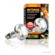Lampe chauffante Exo Terra intense basking spot 100w