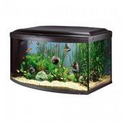 Aquarium CAYMAN 110 SCENIC