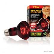 Lampe Exo Terra infrared basking spot 75w