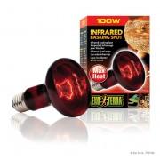 Lampe Exo Terra infrared basking spot 100w
