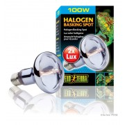 Lampe Exo Terra halogène basking spot 100w