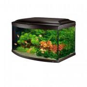 Aquarium CAYMAN 80 SCENIC BLACK T5