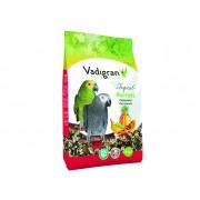 Mélange de graines Perroquet TROPIC 2,5 kg