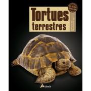 Livre : Les Tortues terrestres