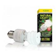 Ampoule lumière naturelle 13w Exo Terra