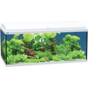 Aquarium Led Blanc 80x30x45 cm