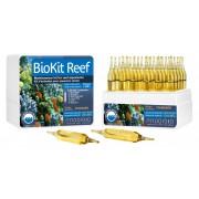 BioKit Reef - Kit entretien aquarium récifal - 30 ampoules