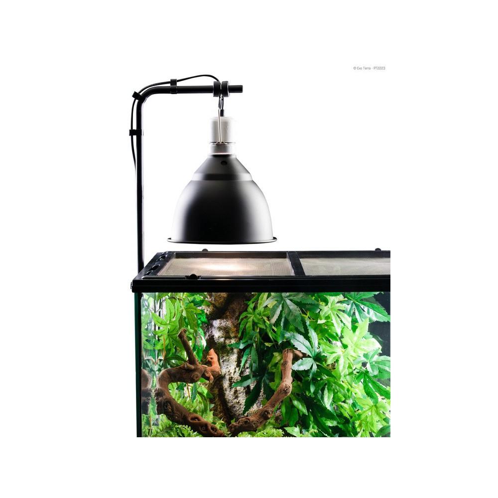 ampoule pour tortue d'eau