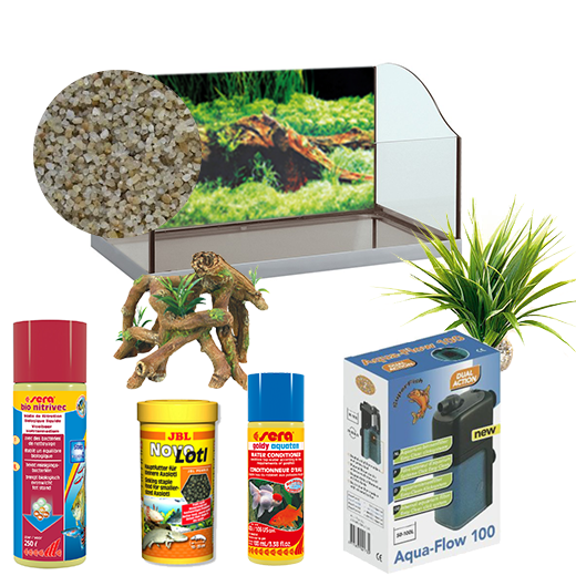Kit Basic jamaica 60 pour axolotl