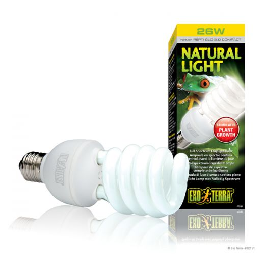 Ampoule Natural light 25W