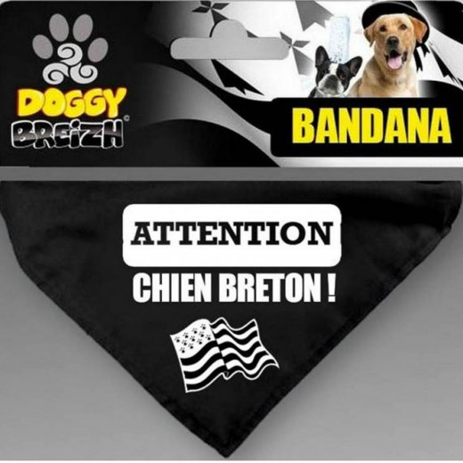 Bandana seul - Attention chien breton