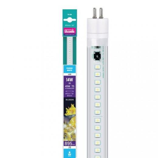 Tube led T5 LED Marine blanc 14 W, 89.5 cm
