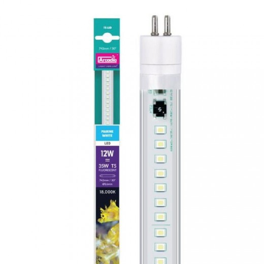 Tube led T5 LED Marine blanc 12 W, 85 cm