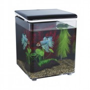 Kit mini aquarium Betta 8 litres noir - Superfish