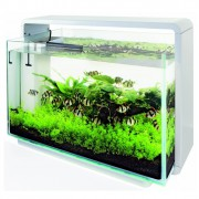 Aquarium Home 80 blanc - Superfish