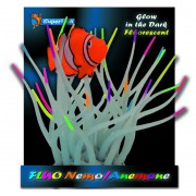 superfish fluo nemo anemone