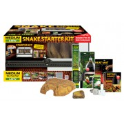 Terrarium starter kit serpent Medium