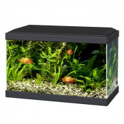 Aquarium Ciano 20 Led 17 L - Noir