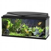 Aquarium Led 71L - Noir