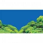 Poster prédécoupé spring /moss - 60x30 cm
