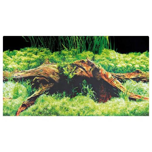 Poster prédécoupé Spring/Moss - 100x50 cm