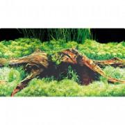 Poster prédécoupé spring/moss 120x50 cm