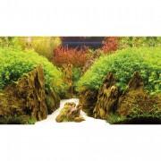 Poster prédécoupé canyon/woodland 100x50 cm