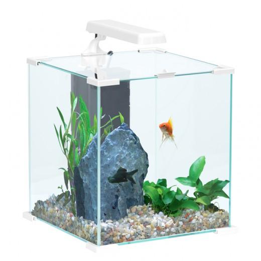 Aquarium nanolife cube blanc 30l for Poisson aquarium 30l