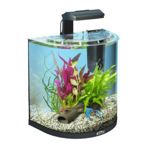 Aquarium Tetra Art - 30L