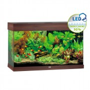 Aquarium Rio 125 LED - Brun