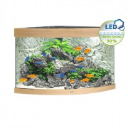 Aquarium Trigon 190 LED - Hêtre