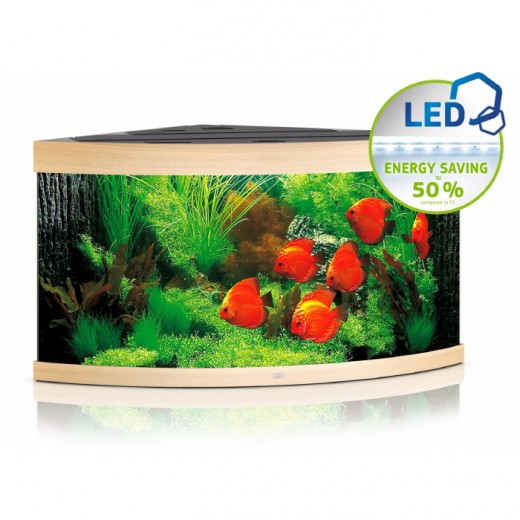 Aquarium équipé Trigon 350 noir, 123x87x65 cm