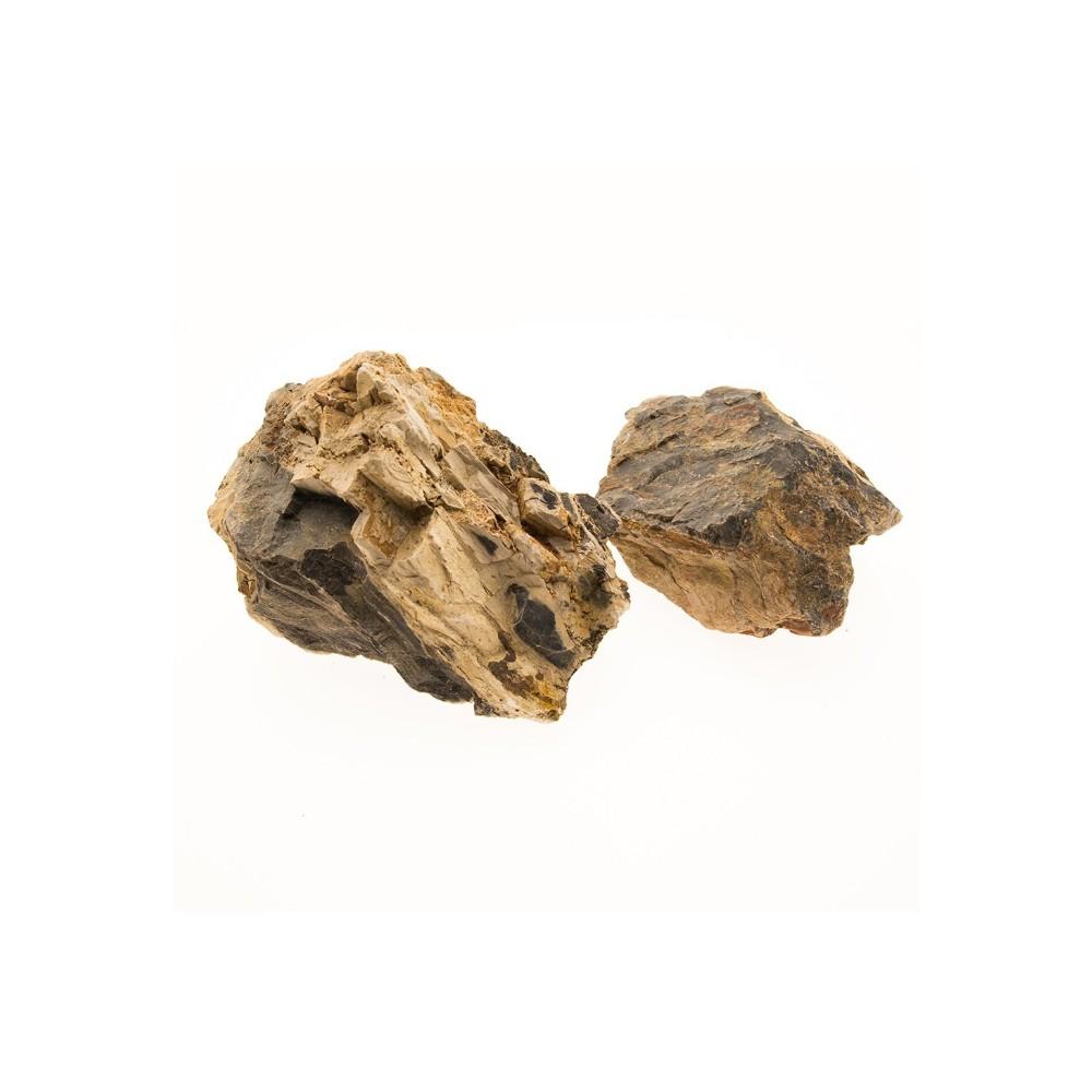 roche bois fossilis 0 8 1 2 kg. Black Bedroom Furniture Sets. Home Design Ideas
