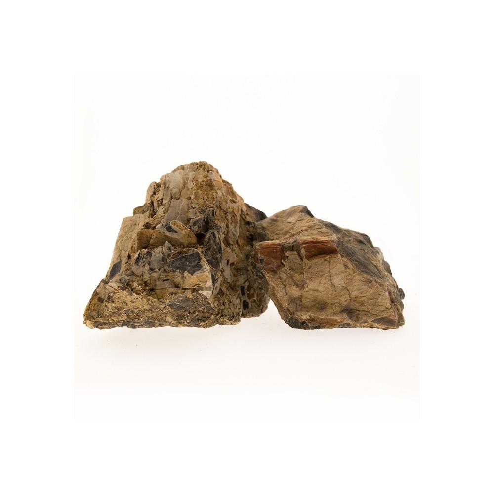 roche bois fossilis 2 3 2 7 kg. Black Bedroom Furniture Sets. Home Design Ideas