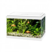 Aquarium 20 Led 17L - Blanc