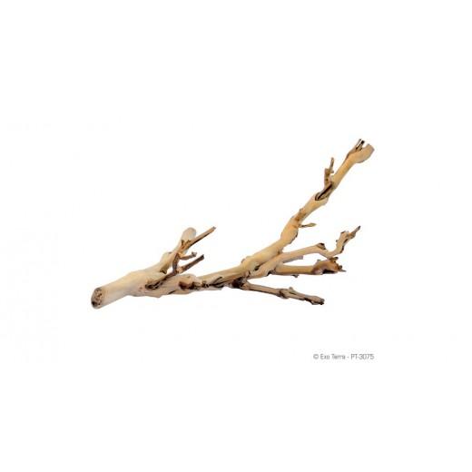 Pied de vigne sablé petit modèle - 30 cm