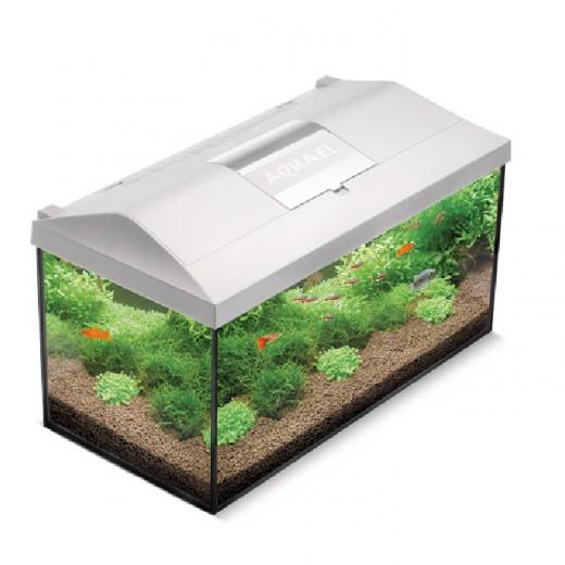 Aquarium Leddy 60 équipé - Blanc