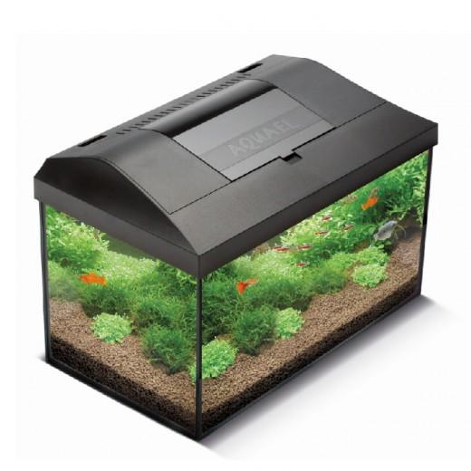 Aquarium Leddy 60 équipé - Noir