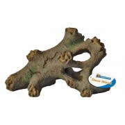 Tree Root - Small